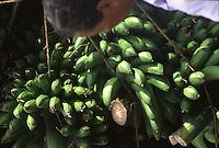 COLOMBIA - Armenia , mercato delle banane banana market in Armenia caschi di banane