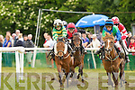 Action from the Supervalu Plate at Castleisland Races on Sunday