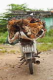 VIETNAM, Hue, chickens for sale on the back of a moped, the side of the road in rural Hue