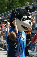 Kansas City, MO - Saturday May 13, 2017: FC Kansas City mascot and fan during a regular season National Women's Soccer League (NWSL) match between FC Kansas City and the Portland Thorns FC at Children's Mercy Victory Field.