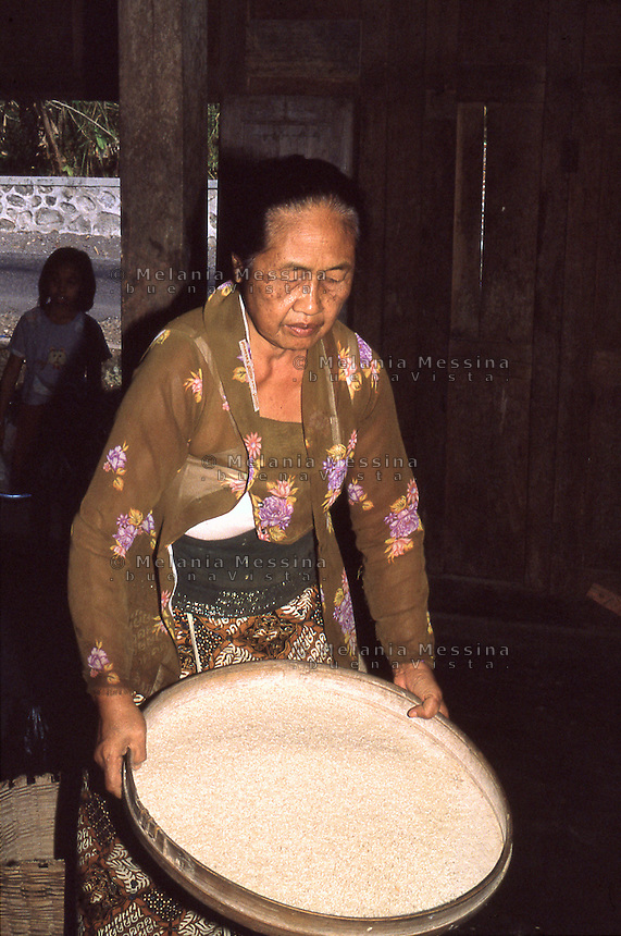 An indonesian peasant working the rice after the harvest..Una contadina indonesiana lavora il riso dopo il raccolto