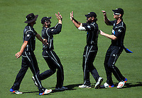 The Black Caps celebrate the dismissal of Hashim Amla during the One Day International cricket match between the New Zealand Black Caps and South Africa Proteas at Westpac Stadium in Wellington, New Zealand on Saturday, 25 February 2017. Photo: Dave Lintott / lintottphoto.co.nz
