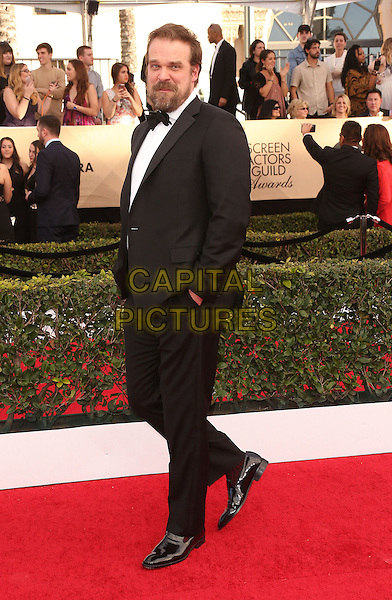29 January 2017 - Los Angeles, California - David Harbour. 23rd Annual Screen Actors Guild Awards held at The Shrine Expo Hall. <br /> CAP/ADM/FS<br /> &copy;FS/ADM/Capital Pictures
