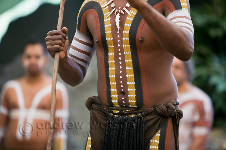 Tribal body paint on indigenous dancer at Tjapukai Aboriginal Cultural Park.  Smithfield, Cairns, Queensland, Australia