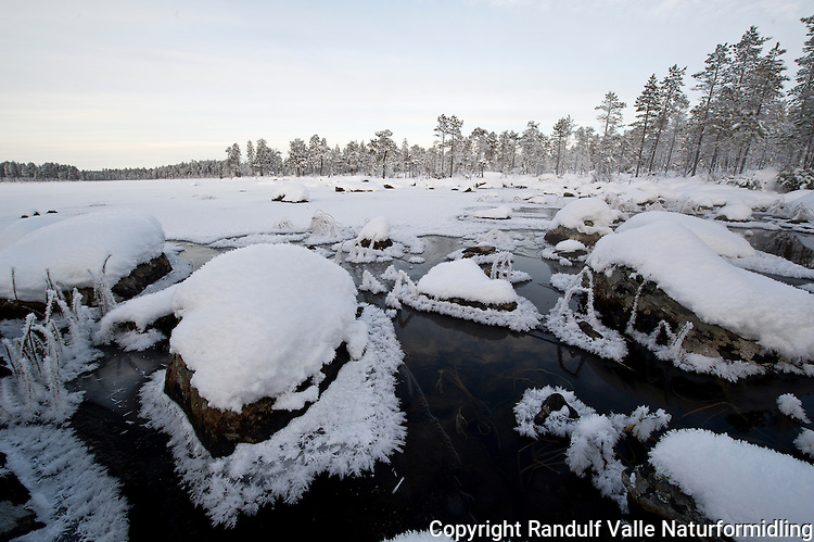 Tidlig vinterdag på Ellenvatnet i Pasvik. ---- Winter in Pasvik, Norway.