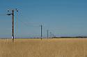 Telephone poles in Karratha, Western Australia