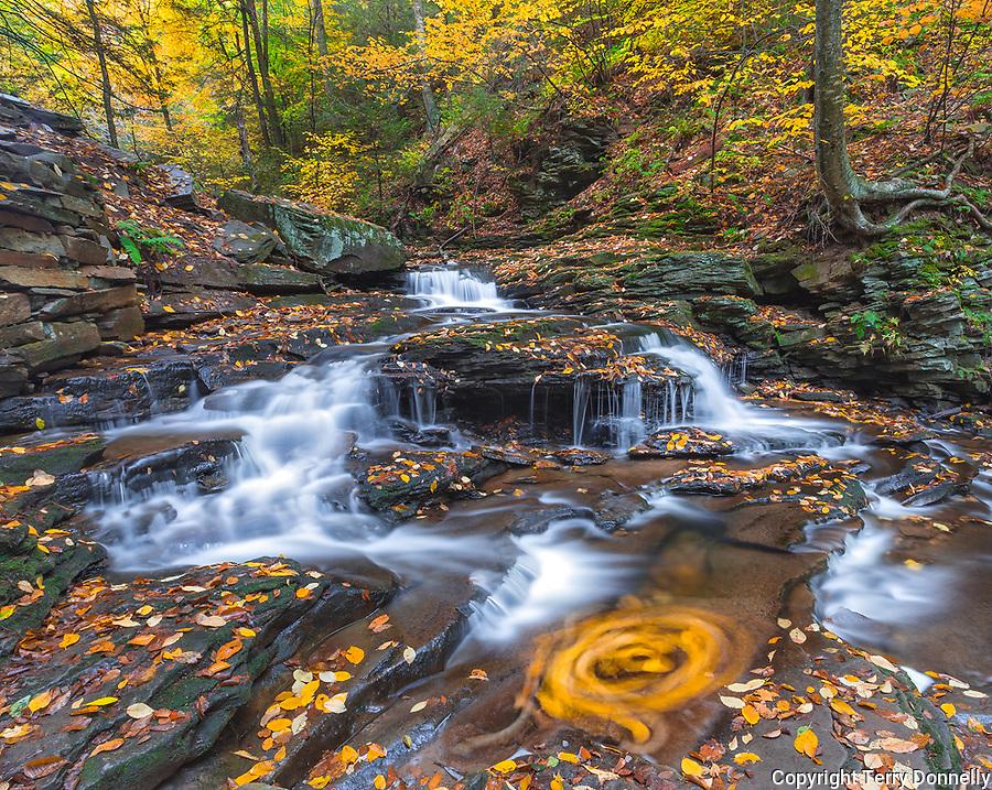 Ricketts Glen State Park, PA: Small braiding falls on Kitchen Creek in autumn