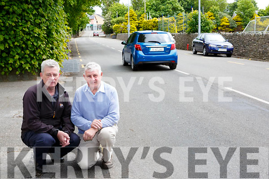 Padraig O'Sullivan and Tim Moriarty are looking for speed signs to be erected in Beaufort village