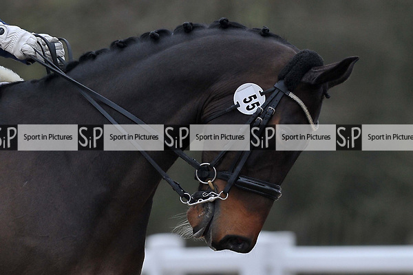 Class 10. British Dressage. Brook Farm training centre. Stapleford abbots. Essex. 24/03/2018. ~ MANDATORY CREDIT Garry Bowden/SIPPA - NO UNAUTHORISED USE - +44 7837 394578