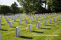 65095-01719 Flags on Memorial Day at Jefferson Barracks National Cemetery, St Louis, MO