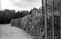 Potsdam, palazzo di Sanssouci. Le nicchie vetrate per piante di fico sulle terrazze dell'antico vigneto --- Potsdam, Sanssouci palace. Glazed niches for growing figs on the ancient vineyard terraces