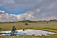 """Grand Tetons from Sagebrush Flats<br /> <br /> For production prints or stock photos click the Purchase Print/License Photo Button in upper Right; for Fine Art """"Custom Prints"""" contact Daryl - 208-709-3250 or dh@greater-yellowstone.com"""