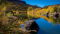 Rio Grande Autumn, New Mexico