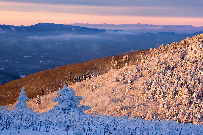 """SHADES OF WINTER"" -- Sunrise light illuminates some areas of this winter scene while leaving the rest in icy shadow. Photographed in the Roan Highlands area of eastern Tennessee and western North Carolina."
