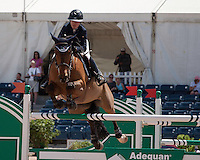 Quick Study ridden by Lauren Hough,  USEF trials#2 Wellington Florida. 3-22-2012