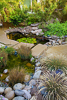 Small California backyard water garden using ponds with reeds (Juncus patens) for water filtration, native grass Calamagrostis foliosa