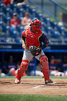 Portland Sea Dogs catcher Jhon Nunez (20) during the second game of a doubleheader against the Reading Fightin Phils on May 15, 2018 at FirstEnergy Stadium in Reading, Pennsylvania.  Reading defeated Portland 9-8.  (Mike Janes/Four Seam Images)