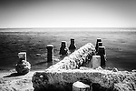 Old pier pilings at Bombay Beach, Salton Sea, CA