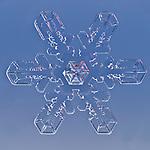 Snowflake. LM