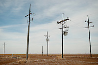 Old telephone poles at the Moore County Cotton Gin in Dumas, Texas, Monday, February 14, 2011. With the high price of cotton in recent years, many farmers in the area have switched to start farming cotton...Photo by Matt Nager