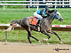 A Class Act winning at Delaware Park on 8/8/13