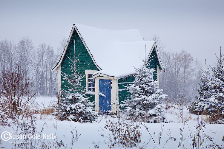 Snowstorm in Cabot, VT