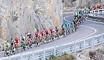 The peloton hug the coastline during the 2016 Milan-San Remo race, running 293km from Milan to San Remo, Italy. 19th March 2016.<br /> Picture: ANSA/Claudio Peri | Newsfile<br /> <br /> <br /> All photos usage must carry mandatory copyright credit (© Newsfile | Claudio Peri)