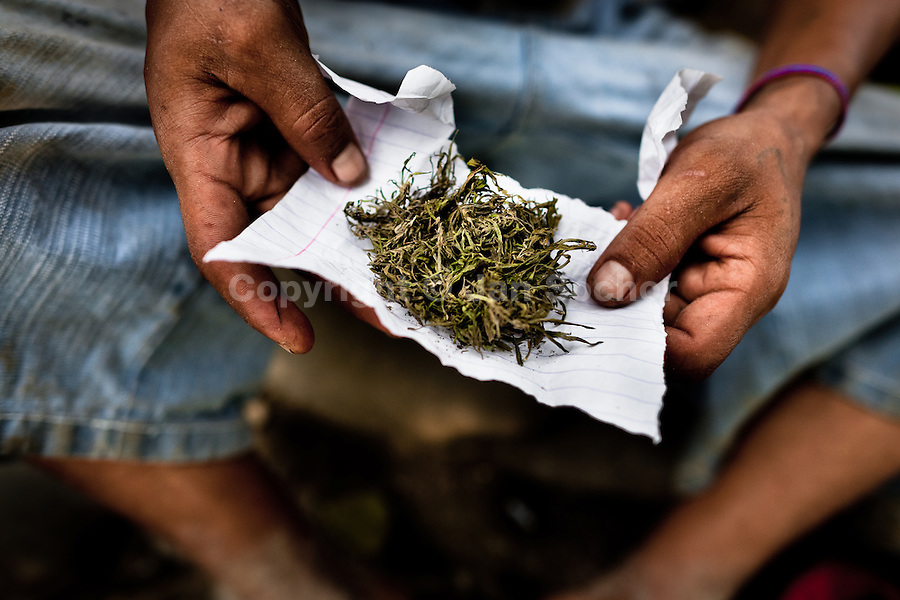 A young Guatemalan boy shows a package of natural marijuana grown outdoors on the Guatemala-Mexico border in Tecun Uman, Guatemala, 23 May 2011.