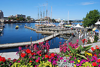 Victoria, British Columbia, Canada, downtown, harbour, flowers, boats, yachts, 200809081096.<br />