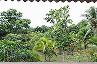 The view from a cabin at the hotel, Osa Clandestina (aka Hacienda Clandesina), on Derek Ferguson's property in Peninsula de Osa, Puntarenas, Costa Rica. CREDIT: Lisa Corson for The Wall Street Journal     SLUG: OFFGRID-Costa Rica Images are available for editorial licensing, either directly or through Gallery Stock. Some images are available for commercial licensing. Please contact lisa@lisacorsonphotography.com for more information.