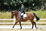 Class 5. British dressage. Brook Farm Training Centre. Essex. UK. 28/07/2018. ~ MANDATORY Credit Garry Bowden/Sportinpictures - NO UNAUTHORISED USE - 07837 394578