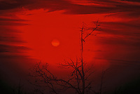 Blood red sunset.