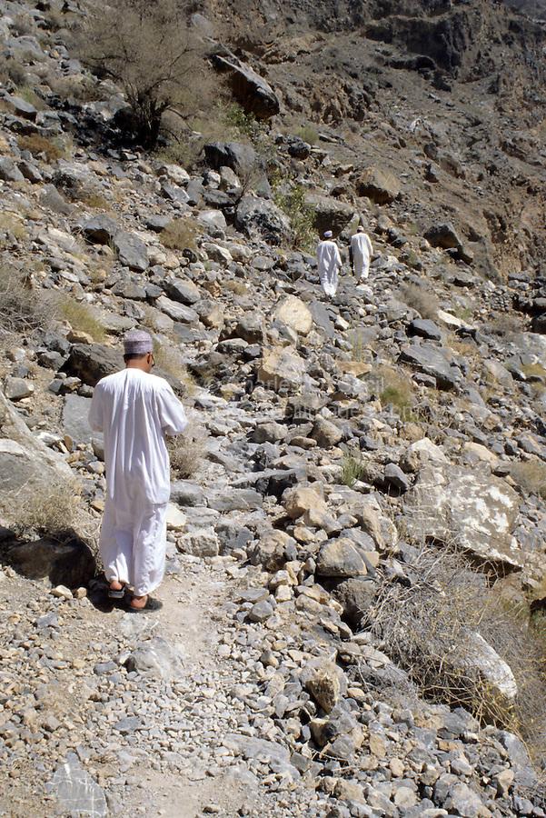 Wadi Bani Kharus, Oman, Arabian Peninsula, Middle East - Hiking toward the source of the mountain spring in one of Oman's coastal mountain canyons.  Near al-Ulya.