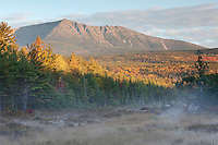Maine's Mt. Katahdin, located in Baxter State Park, is shown here bathed in the first light of an Autumn day with a heavy mist floating through the meadow.