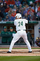 Dominick Cammarata (24) of the Charlotte 49ers at bat against the Clemson Tigers at BB&T BallPark on March 26, 2019 in Charlotte, North Carolina. The Tigers defeated the 49ers 8-5. (Brian Westerholt/Four Seam Images)