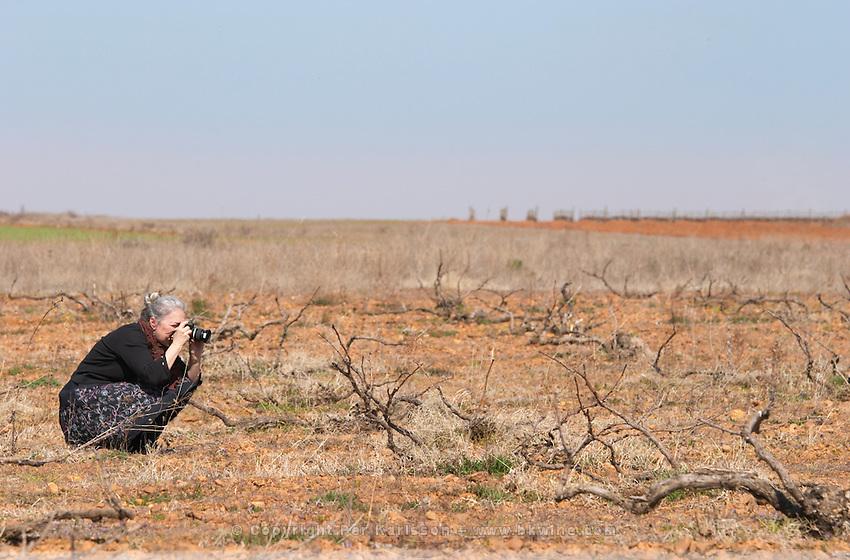 Carla Capalbo, journalist, photographing a prieto picudo vine planted ca 1920 Bodegas Margon , DO Tierra de Leon , Pajares de los Oteros spain castile and leon