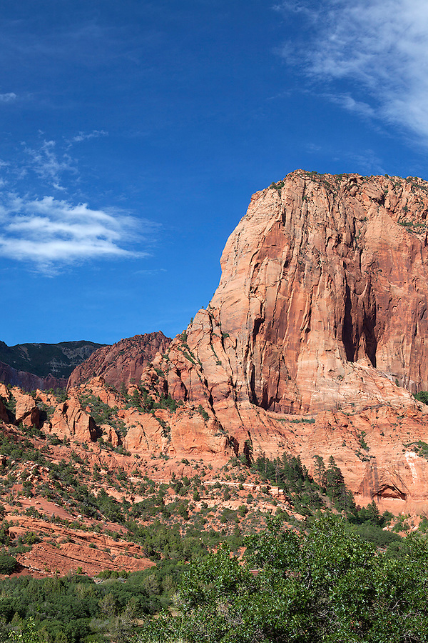 The Kolob Canyons area of Zion National Park in southwestern Utah, USA Zion National Park Kolob Canyons area, UTAH, USA
