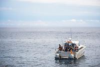 Fishing trip in the Bay of Plenty, North Island, New Zealand