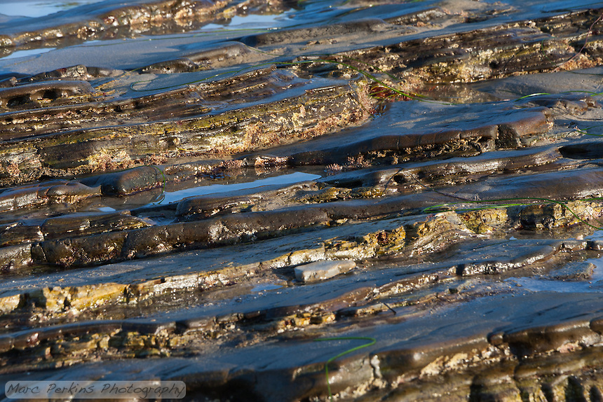 A stretch of layered rocky intertidal at Crystal Cove State Park's beach just after sunrise during a low tide.  I love the diagonal lines and high contrast of this one.
