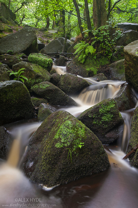 Waterfalls along the course of Burbage Brook, Padley Gorge, Peak District National Park, Derbyshire, UK. July.