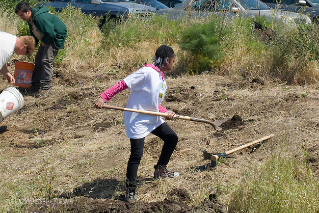 Oakland CA Teen girl digging hole for planting native plants on San Francisco Bay shoreline as part of environmental restoration project on Earth Day