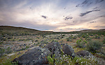 Idaho, Southwest, Owyhee County, Grandview. Sunset on the Owyhee Desert in spring.