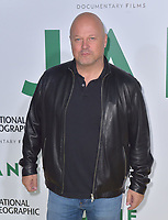 HOLLWOOD, CA - October 09: Michael Chiklis, At Premiere Of National Geographic Documentary Films' 'Jane' At On the Hollywood Bowl In California on October 09, 2017. <br /> CAP/MPIFS<br /> &copy;MPIFS/Capital Pictures