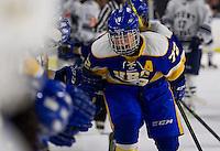 2015.01.10 UBC Women's Hockey vs. Mt. Royal Cougars