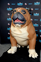 "LOS ANGELES - AUG 28:  Lockjaw, dog, character at the ABC and Marvel's ""Inhumans"" Premiere Screening at the Universal City Walk on August 28, 2017 in Los Angeles, CA"