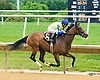 You Know Too winning at Delaware Park on 6/23/16