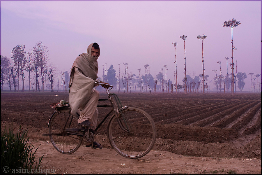 Okara, Punjab, Pakistan. 2008. dawn light over fields in okara - most of the farmers working on these fields are landless peasants with tenant farming agreements with the Pakistan Army