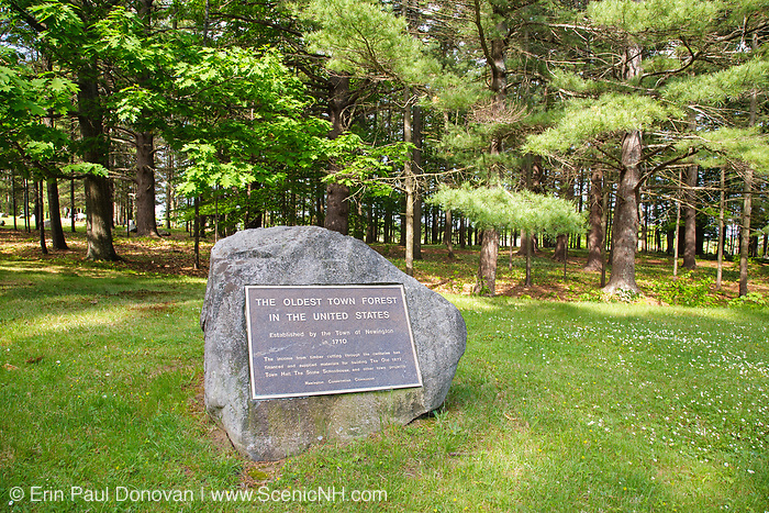 The Oldest Town Forest in the United States is  located in the historical district of Newington, New Hampshire USA. It was established by the town of Newington in 1710.