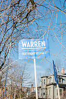Supporters of Democratic presidential candidate and Massachusetts senator Elizabeth Warren hold campaign signs along Linnaean Street Warren walked to Graham & Parks School to vote in the Massachusetts primary as part of Super Tuesday voting in Cambridge, Massachusetts, on Tue., March 3, 2020. The polling place is just a few blocks from Warren's residence. Polls show Warren and Vermont senator Bernie Sanders in a near tie in the Massachusetts Democratic party primary.