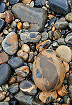 Colorful cobblestones on Hunters Beach at Acadia National Park, Maine.